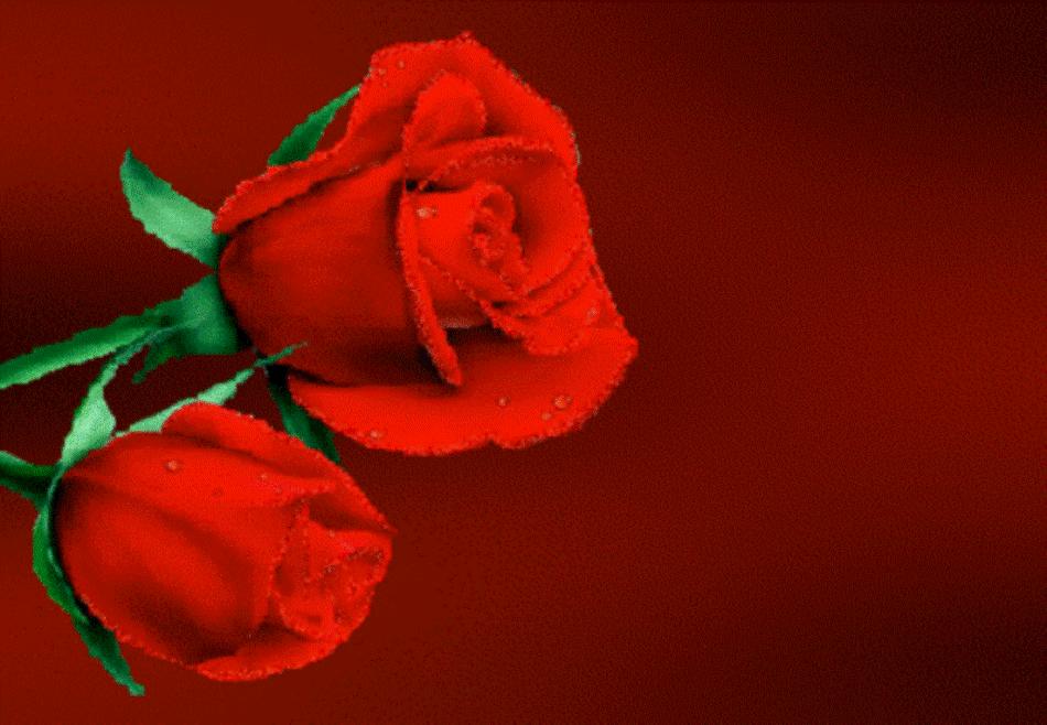 Pra Você Com Carinho: Legenda para fotos